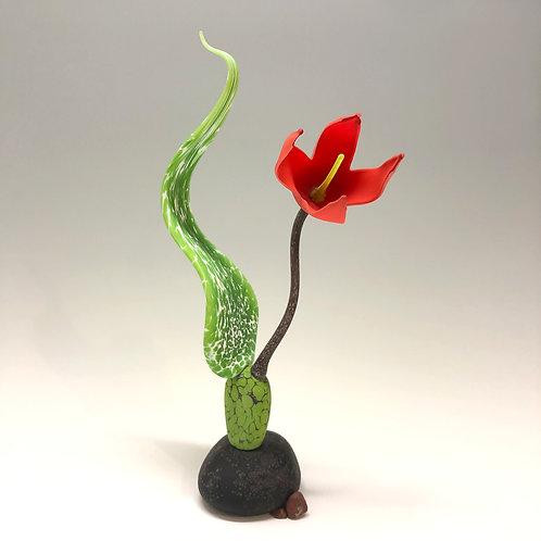 """Prohaska: """"Scarlet Lily"""""""