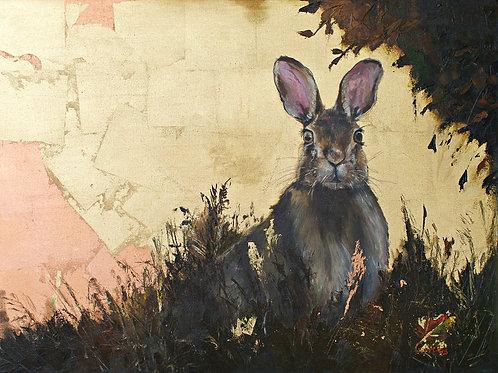 "Collins: ""Golden Hare"""