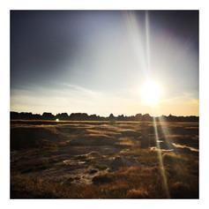 Sunset at Badlands