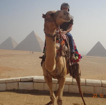 De camelo no Egito
