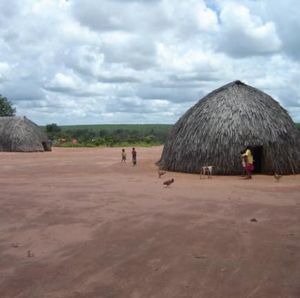Oca na Tribo Paresíer