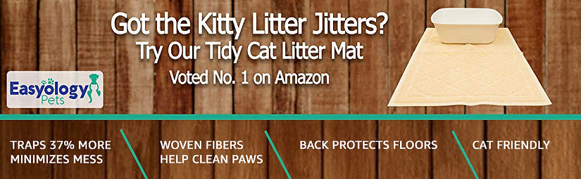 kitty litter.jpg