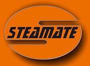 steamate remoção chiclete goma mascar