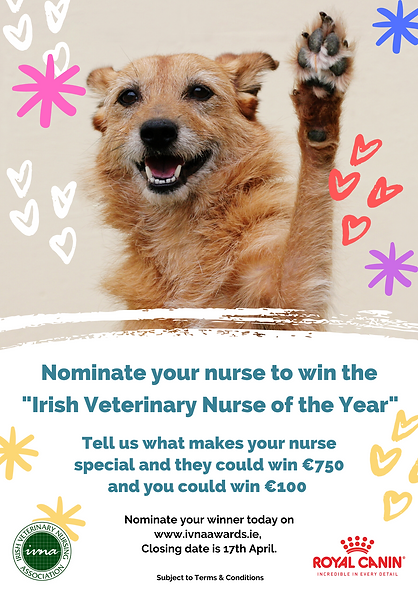 Who is your Veterinary Nurse of the year
