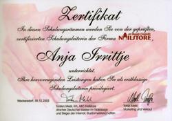 Zertifkat Tanja Merkl