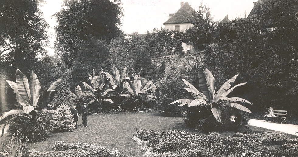 Zwingerpark Offenburg