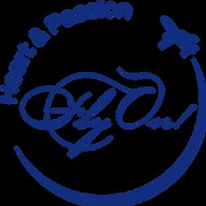 FlyOn_logo_171207C.png
