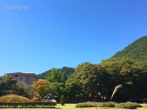 2016_autumn_003.jpg