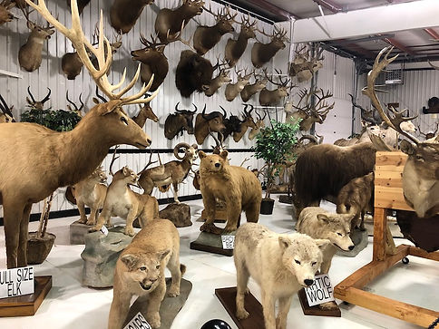 Grice-Clearfield-Community-Museum-2.jpeg