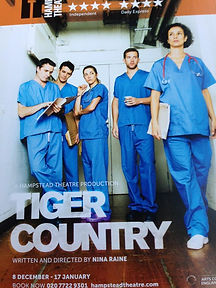 Tiger Country Hampstead Theatre