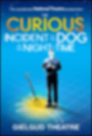 Curious Incident of the Dog In The Night Time Gielgud National Theatre