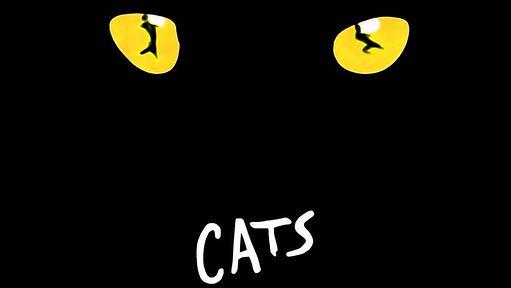 Cats  Vienna.jpg