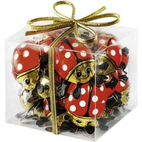 Chocolate Beetles in a box 100g