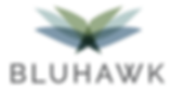 Logo - Bluhawk.png