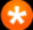 Team Snap Logo2.png