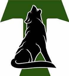bvsw logo.png