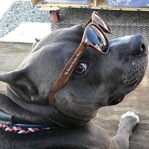 Sunglasses $7.48.jpeg