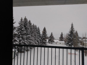 53rd Winter