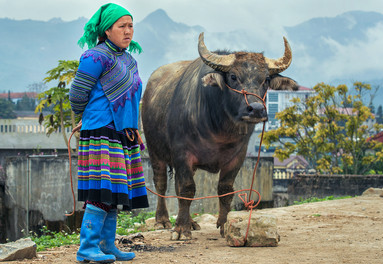 Bac Ha markets rich in culture and tradition
