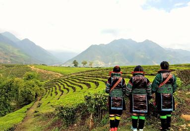 Cultural Sapa in North Vietnam
