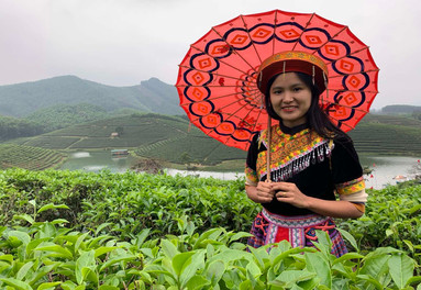 What about Vietnam Travel