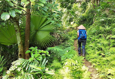 Trkking beyond the tourist tracks at Sapa