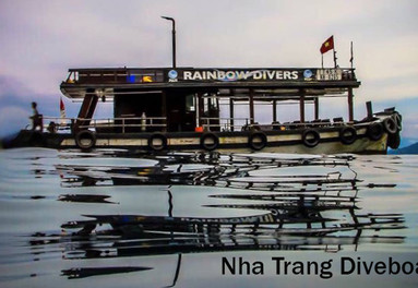 Vietnam offers excellent diving sights