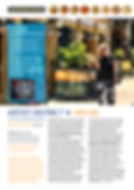 DIY Travel Walking Newsletter-2.png