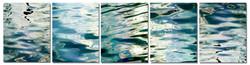 Blue Cosmos series composite