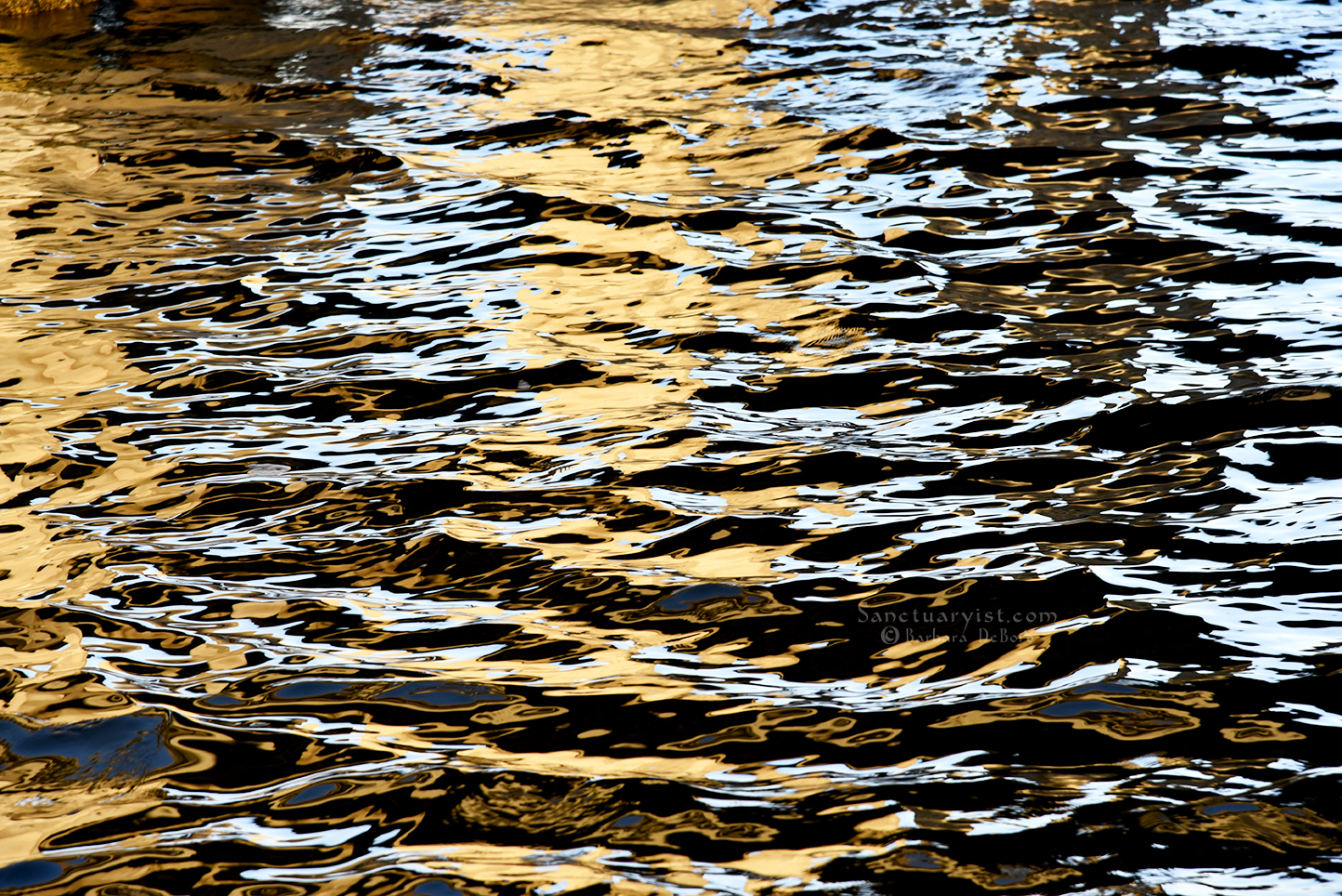 Splash of Gold No 2