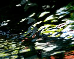 Reflections on Orange Lake No 4