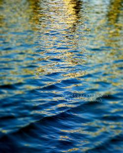 Gilded Seas No 5