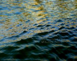 Gilded Seas No 7