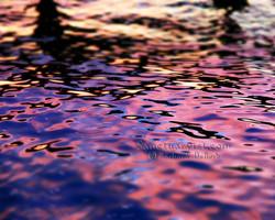 Blue Violet Twilight