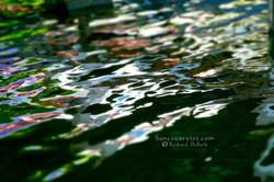 Reflections on Orange Lake No 3