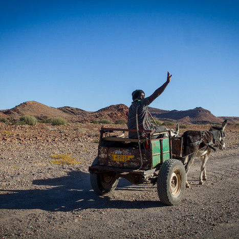 Donkey Cart Greeting, Namibia