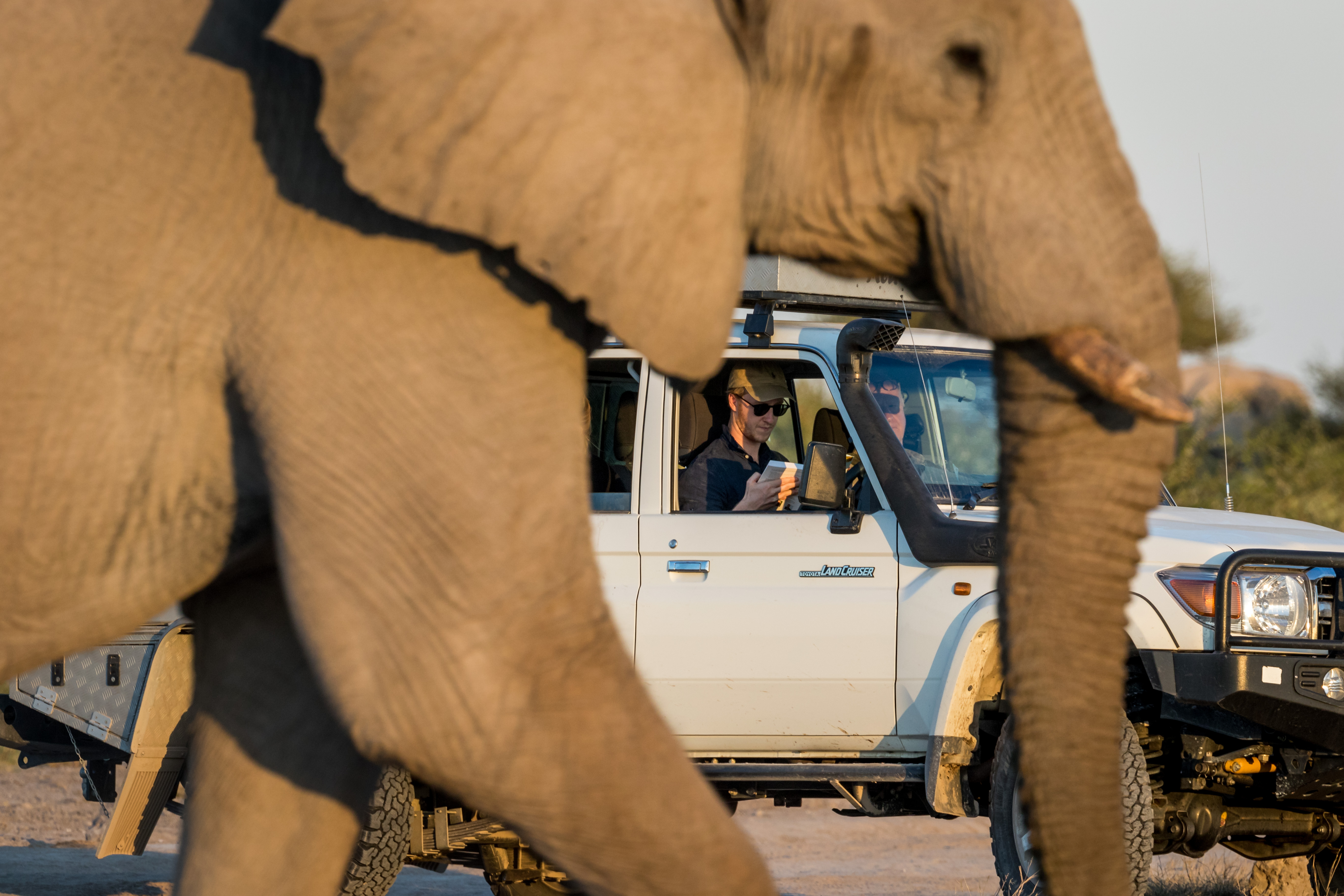 Elephant Nxai Pans