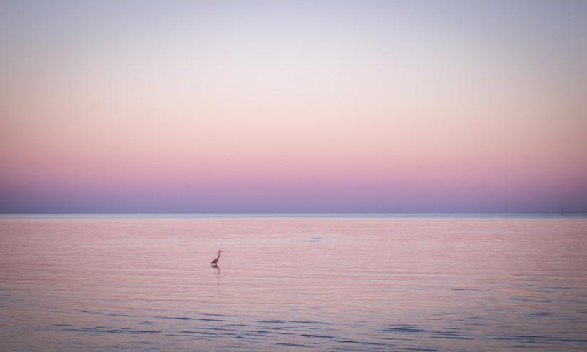 Sunset across the ocean in Gulfport, Mississipp