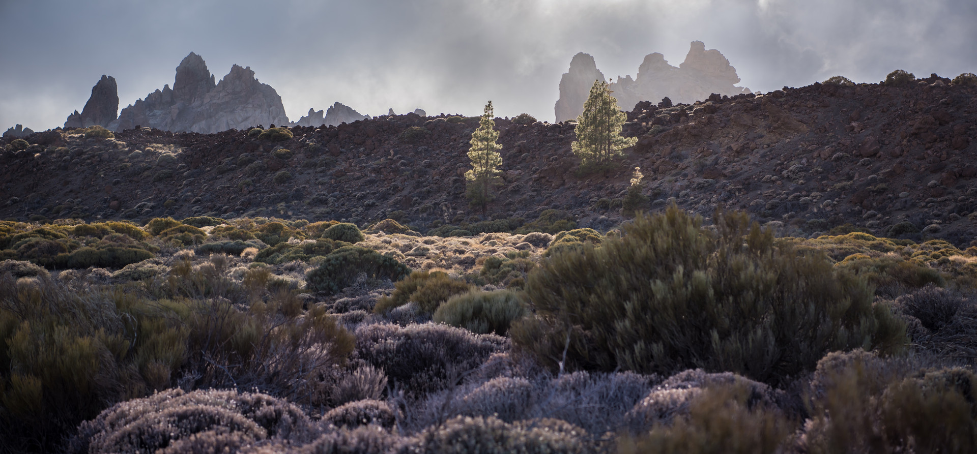 Los Roques de Garcia in the mist of the clouds.