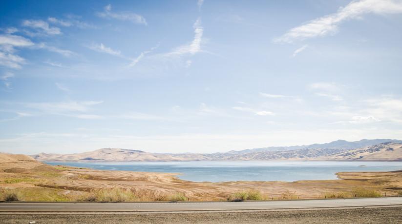 Bleached landscape in California.