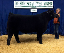 West Virginia State Fair 2nd place