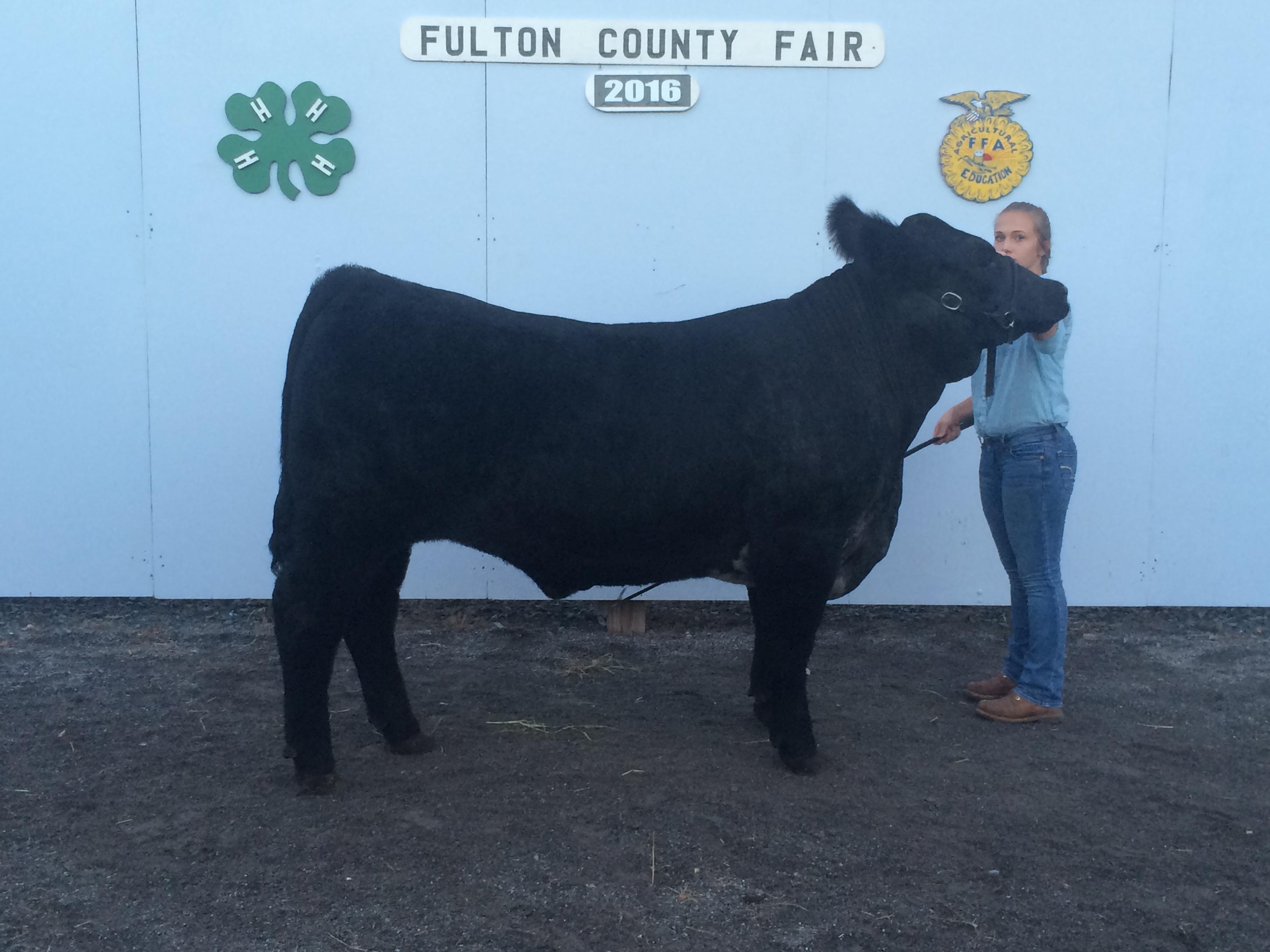Fulton County Fair 2016