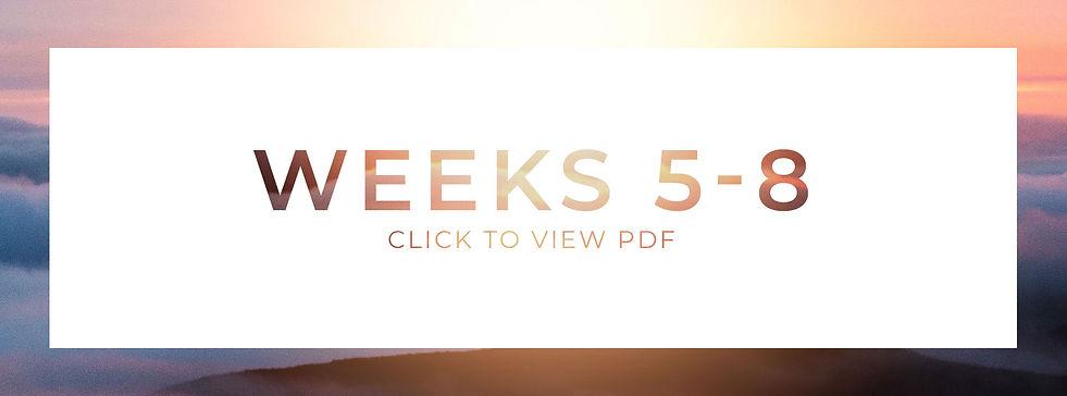 Weeks5-8_Bnr.jpg