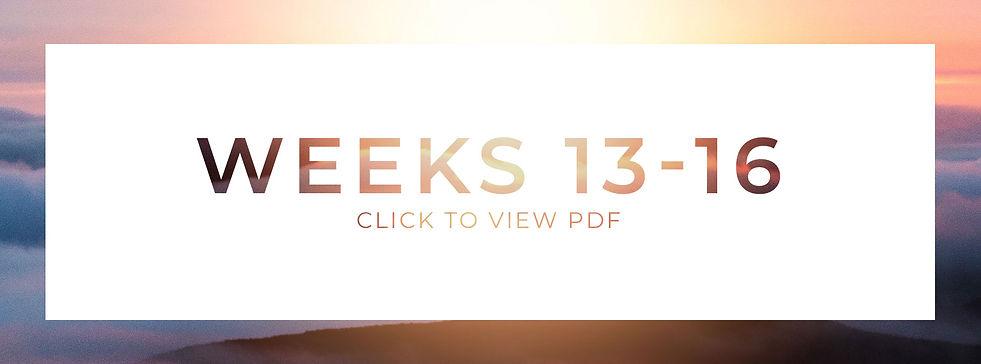 Weeks_13-16.jpg