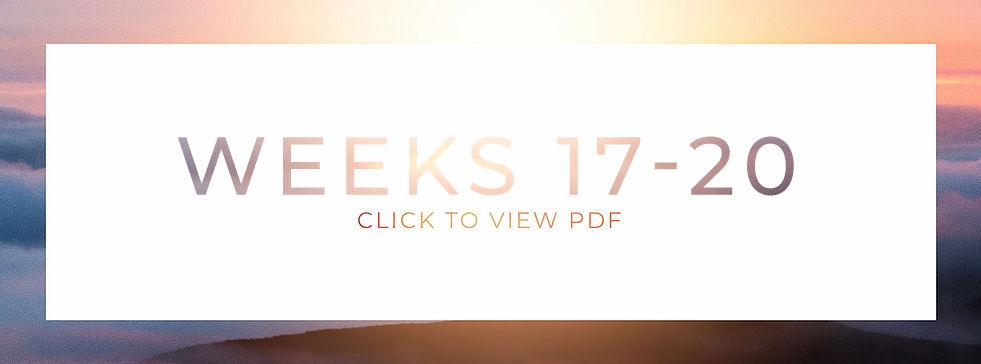 Web_17-20.jpg