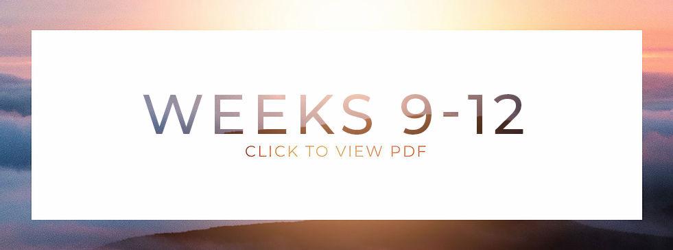 Web-9-12.jpg