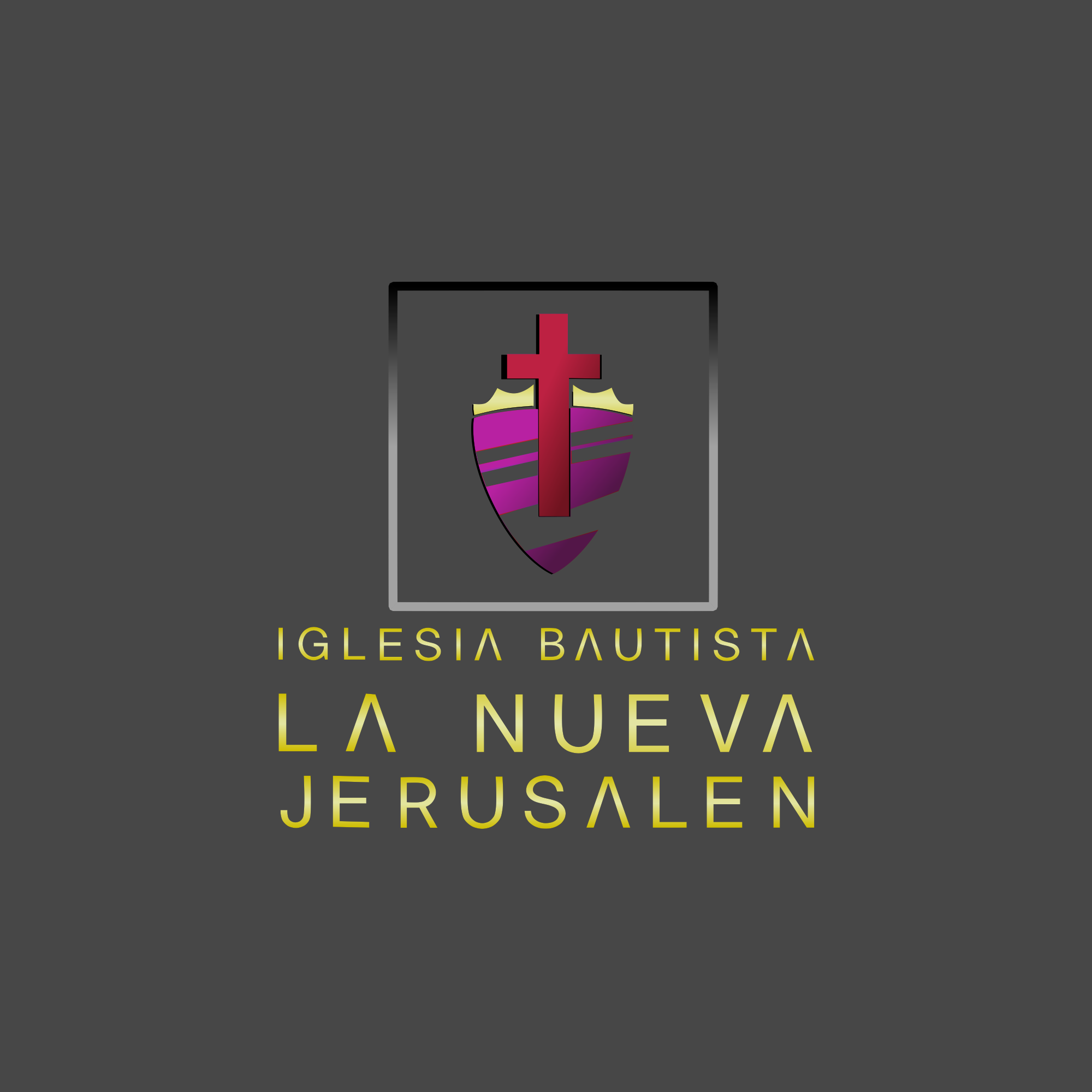 Logo IBNJ 4