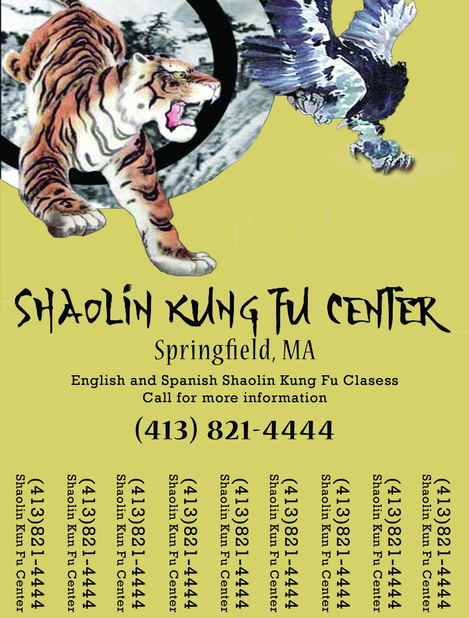 Shaolin Kung Fu Promo