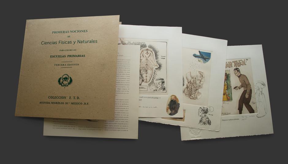 Cuaderno de ciencias físicas y naturales