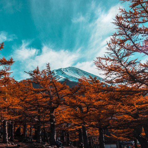 Mount Fuji from Station 5, Japan